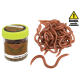 Rame (earthworms)