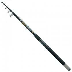 Lanseta Zebco 3.60m Cool Practica 300